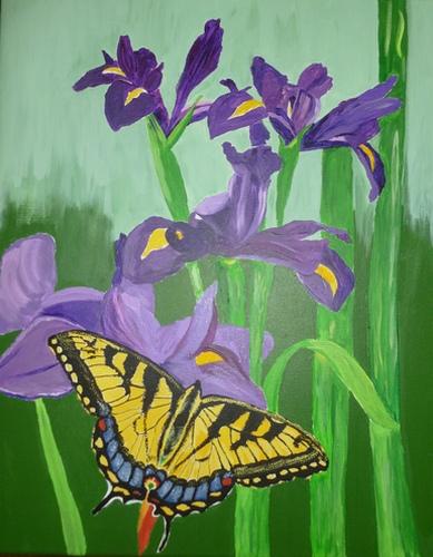 "Irises & Swallowtail, acrylic on canvas, 20""x16"" $600"