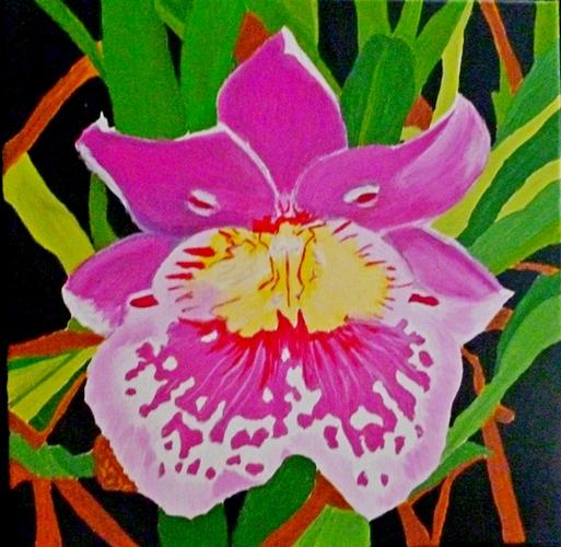 """Miltoniopsis, acrylic, 12""""x12"""" $400"""