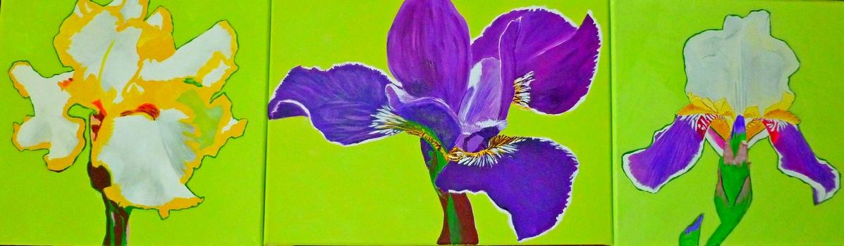 """Iris triptych - acrylic on canvas - 12x40"""" - $600."""