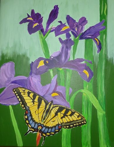 "Irises & Swallowtail, acrylic on canvas, 20""x16"" $600"